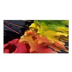 Green Yellow Red Maple Leaf Satin Shawl