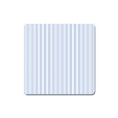 Alice Blue Pinstripe in an English Country Garden Square Magnet