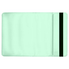 Pale Green Summermint Pastel Green Mint iPad Air 2 Flip