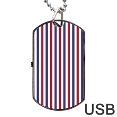 USA Flag Red White and Flag Blue Wide Stripes Dog Tag USB Flash (One Side)