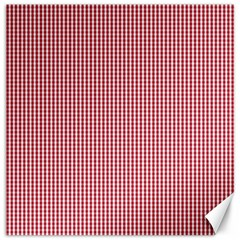 USA Flag Red and White Gingham Checked Canvas 20  x 20