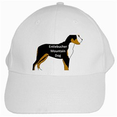 Entlebucher Mt Dog Name Silo Color White Cap