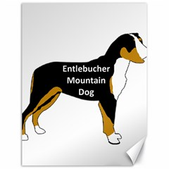 Entlebucher Mt Dog Name Silo Color Canvas 18  x 24