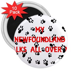 My Newfie Walks On Me 3  Magnets (10 pack)