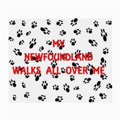 My Newfie Walks On Me Small Glasses Cloth (2-Side)