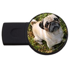 Pug Fawn Full USB Flash Drive Round (4 GB)