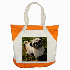 Pug Fawn Full Accent Tote Bag