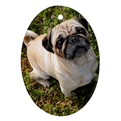 Pug Fawn Full Oval Ornament (two Sides)