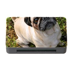 Pug Fawn Full Memory Card Reader with CF