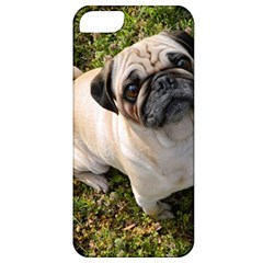 Pug Fawn Full Apple iPhone 5 Classic Hardshell Case
