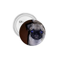 Pug Full 5 1.75  Buttons