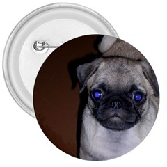 Pug Full 5 3  Buttons