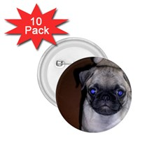 Pug Full 5 1.75  Buttons (10 pack)