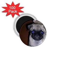 Pug Full 5 1.75  Magnets (100 pack)