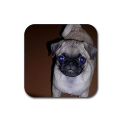 Pug Full 5 Rubber Square Coaster (4 pack)