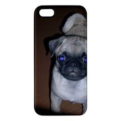 Pug Full 5 iPhone 5S/ SE Premium Hardshell Case
