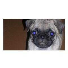 Pug Full 5 Satin Shawl
