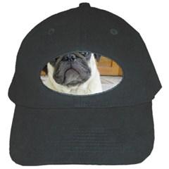 Pug Laying Black Cap