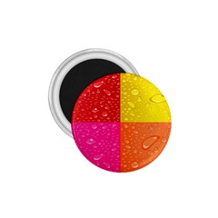 Color Abstract Drops 1.75  Magnets