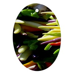 Bright Peppers Oval Ornament (two Sides)
