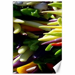 Bright Peppers Canvas 20  x 30