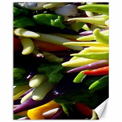 Bright Peppers Canvas 11  X 14