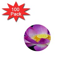 Pink Lotus Flower 1  Mini Buttons (100 pack)