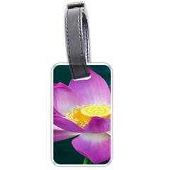 Pink Lotus Flower Luggage Tags (two Sides)
