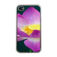 Pink Lotus Flower Apple iPhone 4 Case (Clear)