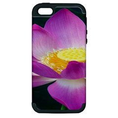 Pink Lotus Flower Apple Iphone 5 Hardshell Case (pc+silicone)