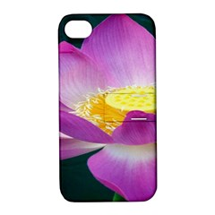 Pink Lotus Flower Apple Iphone 4/4s Hardshell Case With Stand