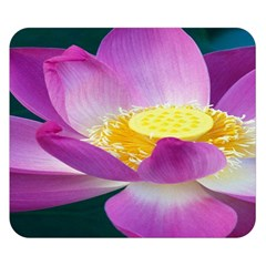 Pink Lotus Flower Double Sided Flano Blanket (Small)