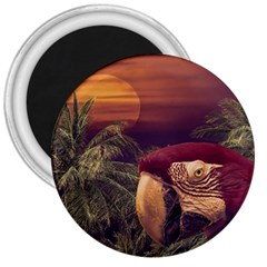 Tropical Style Collage Design Poster 3  Magnets