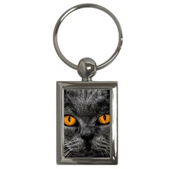 Cat Eyes Background Image Hypnosis Key Chains (Rectangle)