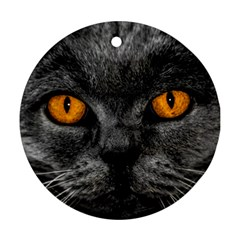 Cat Eyes Background Image Hypnosis Round Ornament (Two Sides)