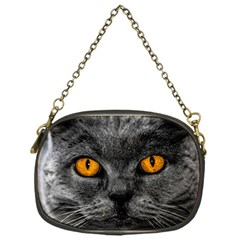 Cat Eyes Background Image Hypnosis Chain Purses (one Side)