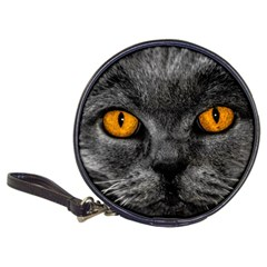 Cat Eyes Background Image Hypnosis Classic 20 Cd Wallets