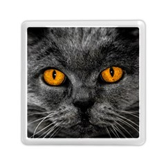 Cat Eyes Background Image Hypnosis Memory Card Reader (square)