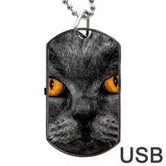 Cat Eyes Background Image Hypnosis Dog Tag USB Flash (Two Sides)