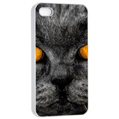 Cat Eyes Background Image Hypnosis Apple iPhone 4/4s Seamless Case (White)