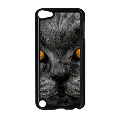 Cat Eyes Background Image Hypnosis Apple iPod Touch 5 Case (Black)
