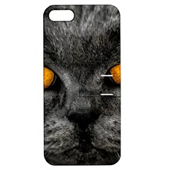 Cat Eyes Background Image Hypnosis Apple Iphone 5 Hardshell Case With Stand