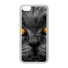 Cat Eyes Background Image Hypnosis Apple Iphone 5c Seamless Case (white)