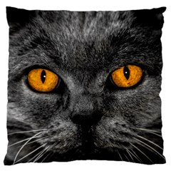 Cat Eyes Background Image Hypnosis Large Flano Cushion Case (two Sides)