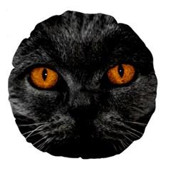 Cat Eyes Background Image Hypnosis Large 18  Premium Flano Round Cushions