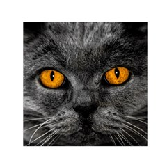 Cat Eyes Background Image Hypnosis Small Satin Scarf (Square)