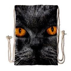 Cat Eyes Background Image Hypnosis Drawstring Bag (large)