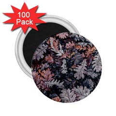 Leaf Leaves Autumn Fall Brown 2 25  Magnets (100 Pack)