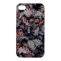 Leaf Leaves Autumn Fall Brown Apple Iphone 4/4s Premium Hardshell Case