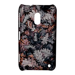Leaf Leaves Autumn Fall Brown Nokia Lumia 620